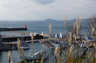 浦賀道(戸塚):鐙摺山から葉山マリーナ越しに江ノ島を望む