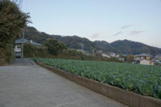 浦賀道(戸塚):上山口の浦賀道風景