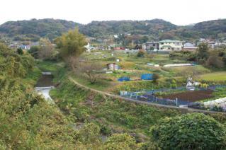 浦賀道(戸塚):栗坪付近の風景-2