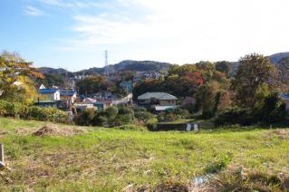 浦賀道(戸塚):椚林の尾根筋からの眺め-2
