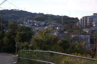 浦賀道(戸塚):伝馬場坂上から降りてきた方角を見る