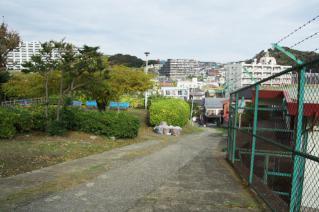 浦賀道(戸塚):平作公園上から-1