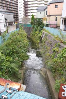 浦賀道(戸塚):宇東川