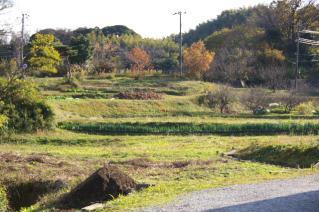 浦賀道(戸塚):木古庭の町民農園を県道から見る