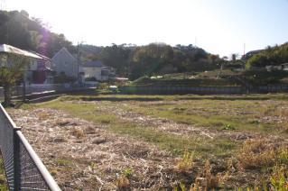 浦賀道(戸塚):阿部倉の土橋付近の休耕地