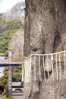 藤沢・遊行寺:大銀杏と書院の冠木門