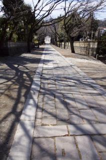 藤沢・遊行寺:いろは坂の上から