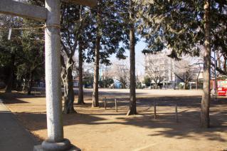 橋本・神明大神宮:境内の広場