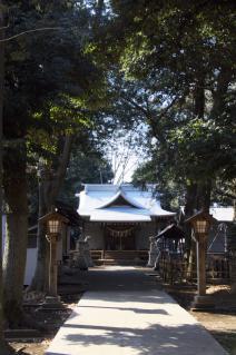 橋本・神明大神宮:参道より拝殿