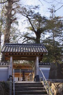 橋本・瑞光寺山門