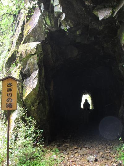 IMG_2348_さぎりトンネル