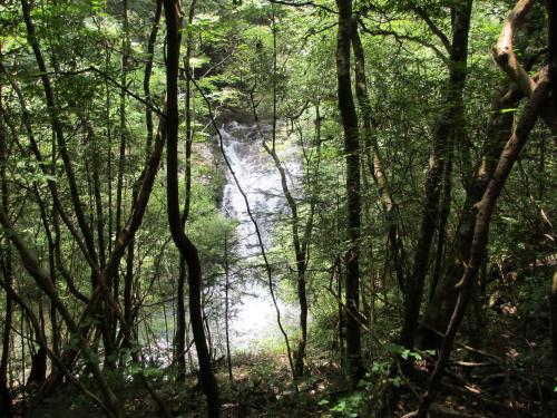 IMG_2359_さらさの滝2