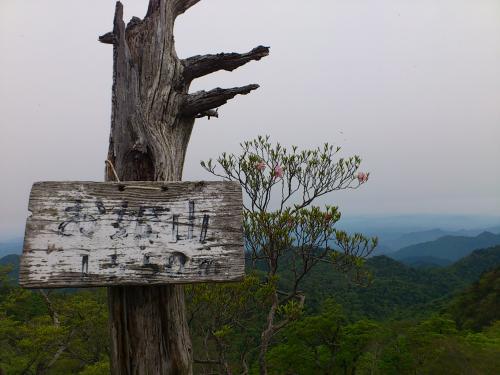 お姫山 頂上