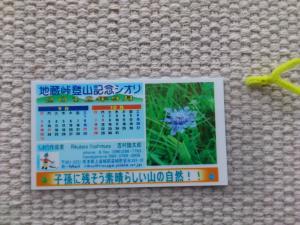 DSC_2532_convert_20120905082719.jpg