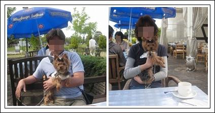 4cats_20120525233051.jpg
