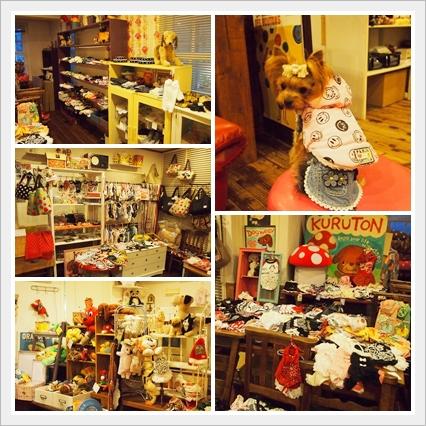 8cats_20121210230521.jpg