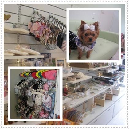 cats_20120513214209.jpg