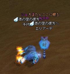 お墓(´・ω・`)