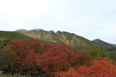 紅葉の御嶽山
