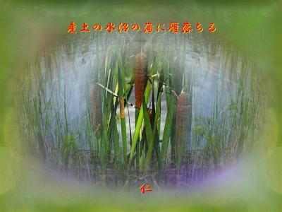 産土の水沼の蒲に雁落ちる