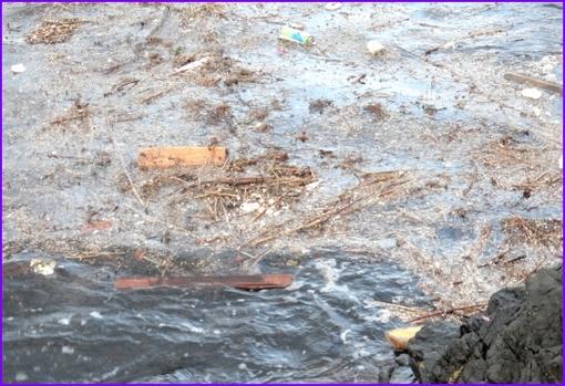 20120707  ゴミ