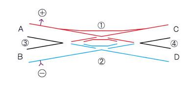 SSS基本図