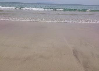 白浜プライスレス