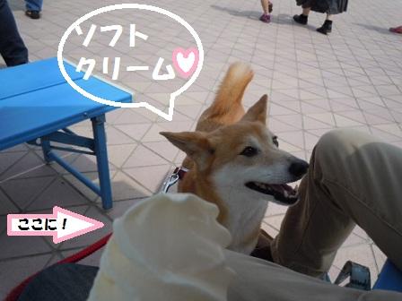 ソフトクリーム☆