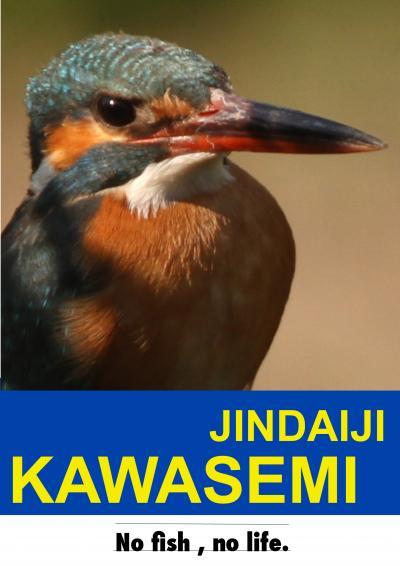 kawasemipop-e_convert_20120702001235.jpg