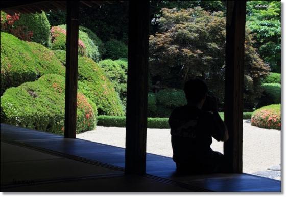 頼久寺20120607