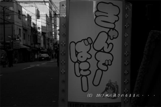 2012年 年の瀬の日本橋・でんでんタウン5