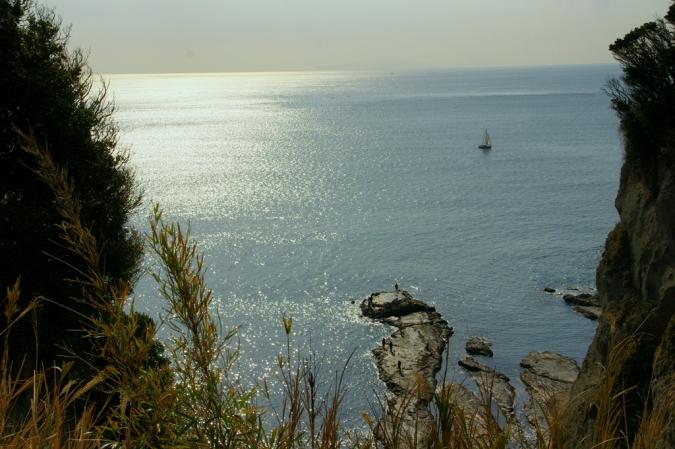 DSC08421江の島