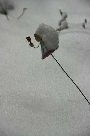 DSC00789東京雪