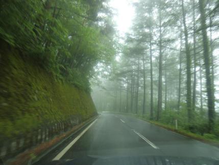 霧のチェリーパークライン