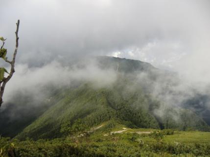駒津峰下から双児山からの道を振り返る