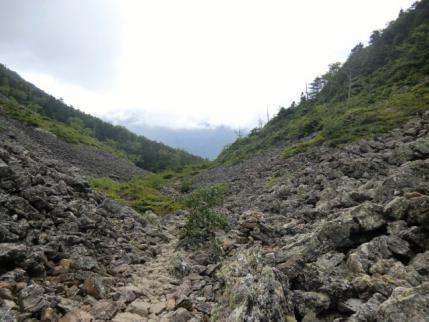 仙水峠から下りの道