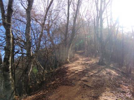 山頂への道