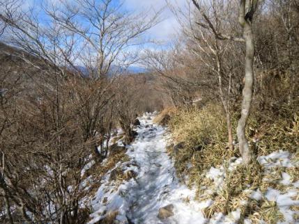 踏み跡は凍結、滑って尻餅