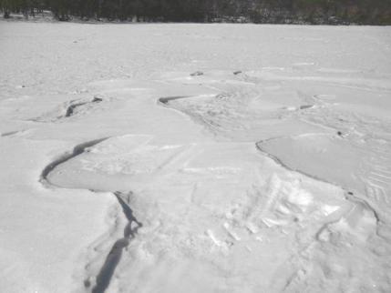 氷上も雪は少ない