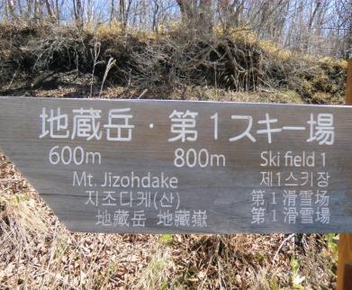 最初から600mです