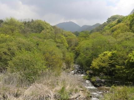 ふれあい橋から地蔵岳