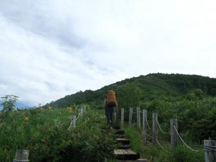 お花畑の階段を