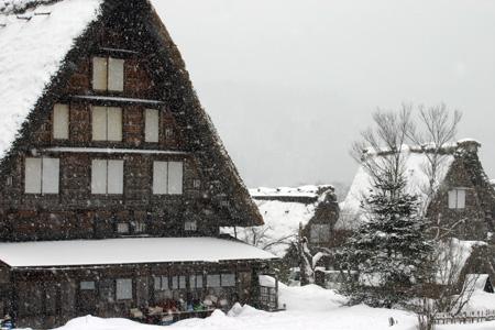 世界遺産 白川郷 ~厳しい冷え込みとなり、氷点下の冬日~茅葺き屋根も雪で白く ③