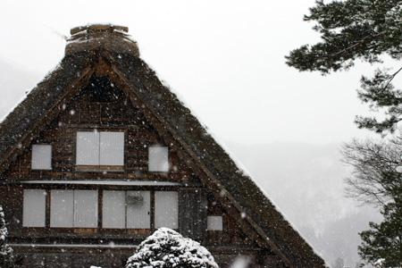 世界遺産 白川郷 ~厳しい冷え込みとなり、氷点下の冬日~茅葺き屋根も雪で白く ⑤