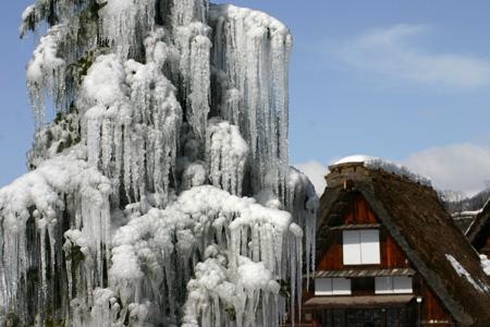 明日2月8日(土)☃雪予報~世界遺産 白川郷~ 2月9日(日)白川郷ライトアップ期待できるかな?! ⑥