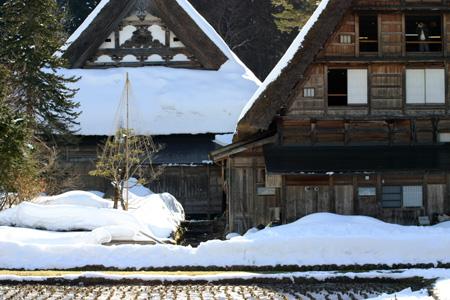 長く感じる冬の季節の中に感じる春の息吹~日本の原風景を思い起こさせる世界遺産 白川郷~ゆっくりとですが確実に春の訪れがやってまいります ⑨