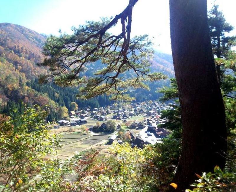 紅葉まっさかりの秋と雪景色が楽しめる季節!秋から冬にかけての白川郷は四季を感じられるよ ③