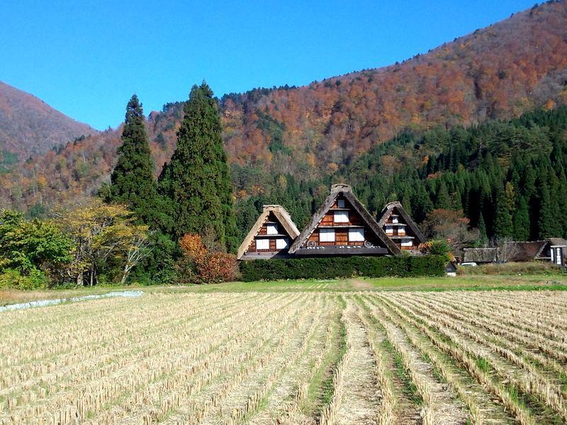 周りを山で囲まれた白川郷には、 綺麗な紅葉を見ることができるスポットが多数! お散歩がてら「紅葉狩り」へ 疲れたら美肌効果の高い「大白川温泉 しらみずの湯」でほっこり…♪ ⑨