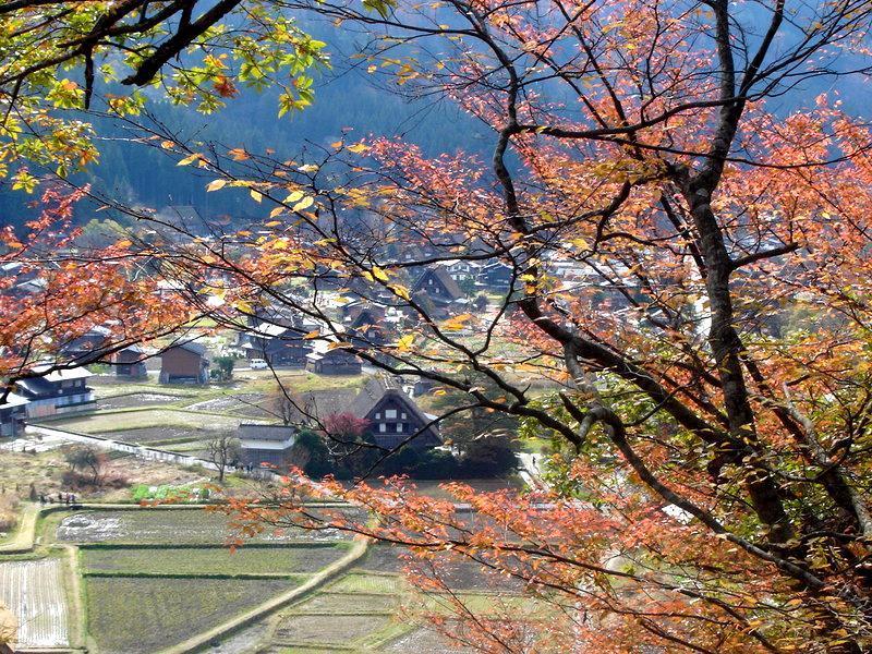 秋の過ごしやすい日もだんだんと終わり、肌寒い日が続いて来ました(^O^)/ ④