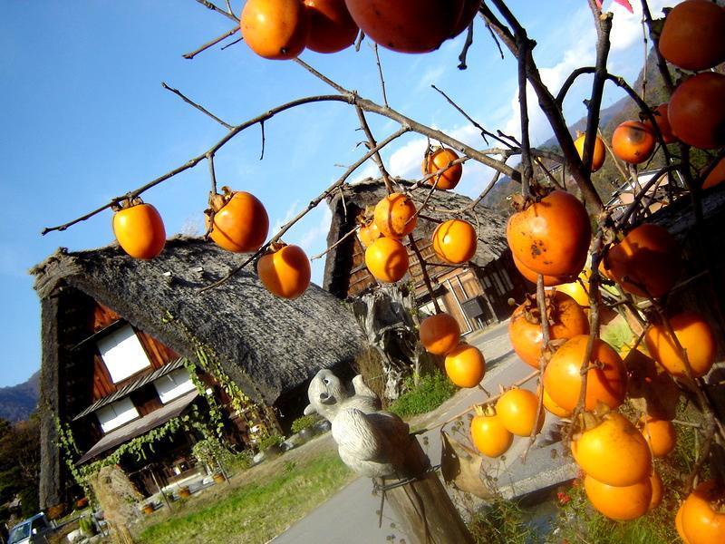 秋の過ごしやすい日もだんだんと終わり、肌寒い日が続いて来ました(^O^)/ ⑥